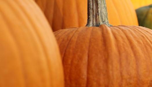 Jeera Pumpkin