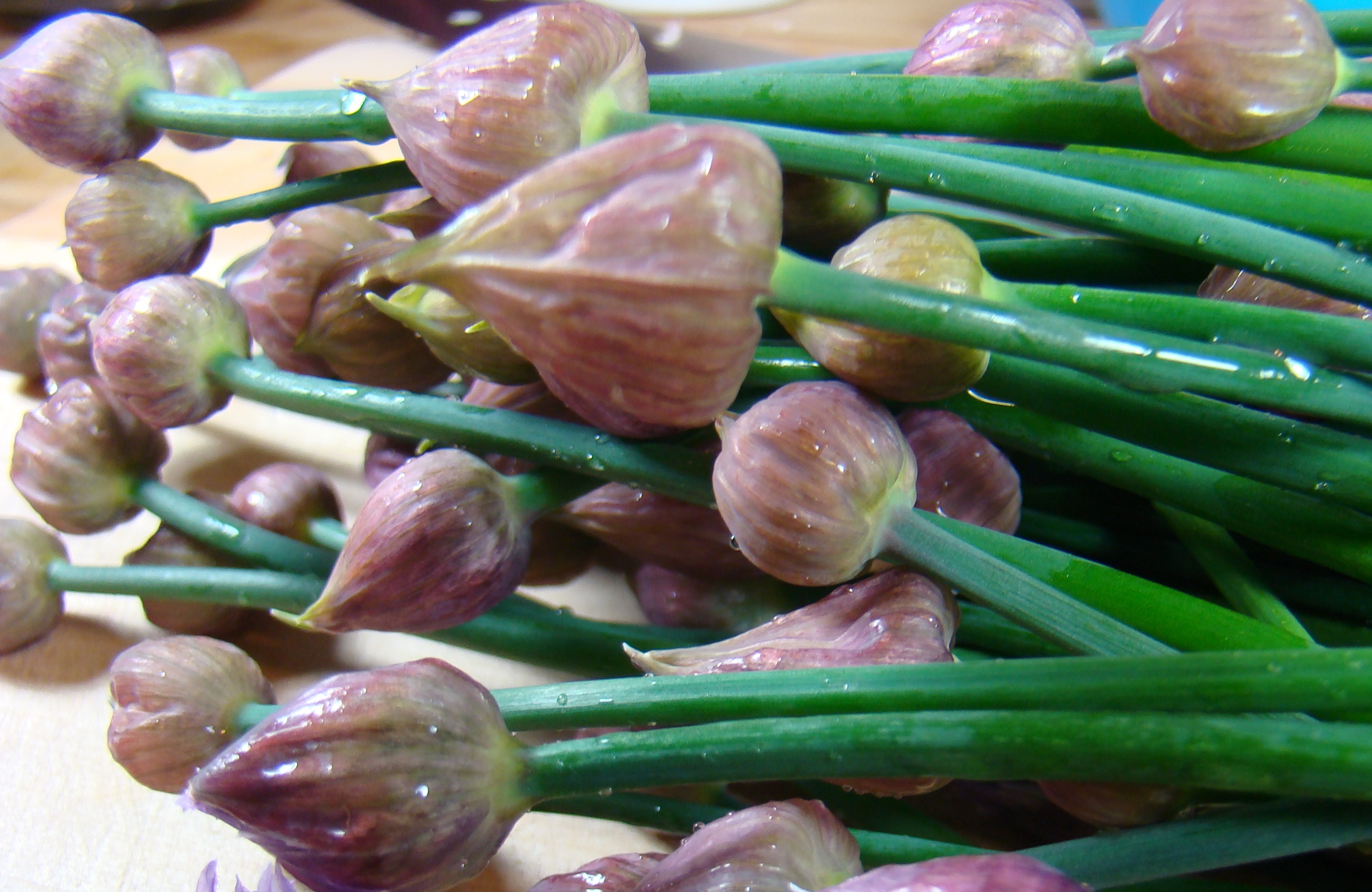 Chive Flower and Shrimp Stir Fry