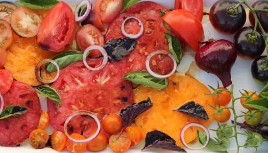 2013 Tomato Varieties