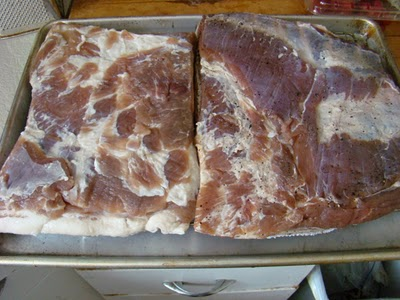 forming the pellicle