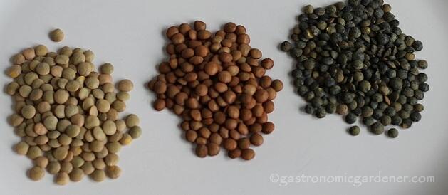 three lentils